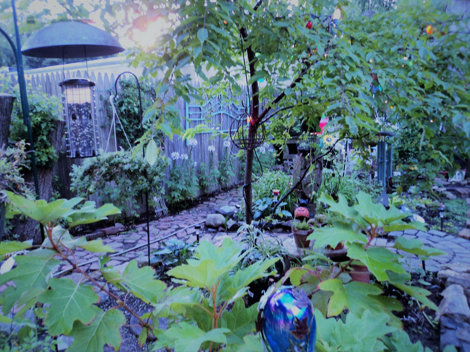 garden-large-view