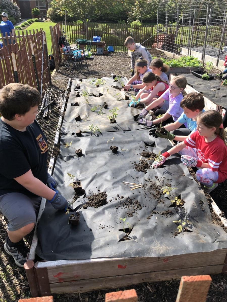 Sunday-School-Planting