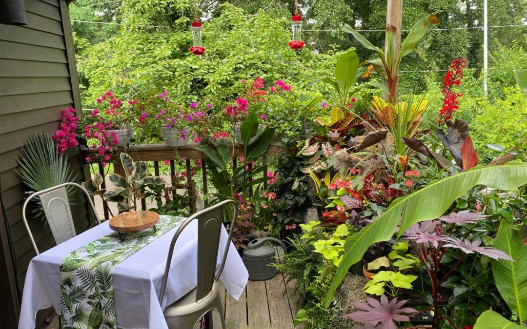 """""""Tropical Deck Garden"""" by Vernon Chubb"""